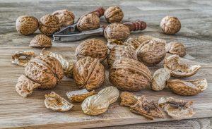 nuts-2971675_1280