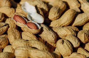 nuts-1736520_1920
