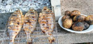 grilled-fish-3779810_640